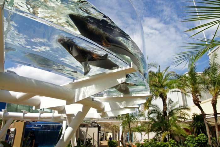 サンシャイン水族館の割引クーポンを調べてみました