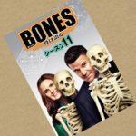 ボーンズ・シーズン11はhuluで観れるのか?無料の動画配信サービスを調べてみました